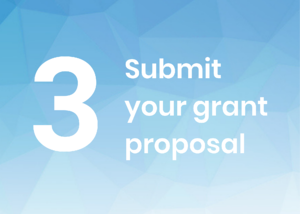 3. Submit your grant proposal